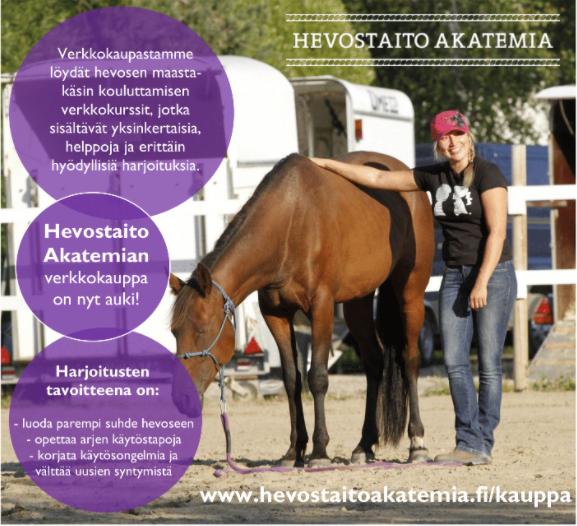 Hevostaito Akatemia | Hevosen maastakäsin kouluttaminen -verkkokurssit hevosien kouluttamiseen.